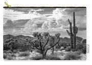 The Desert Speaks Carry-all Pouch