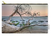 The Fallen Tree Carry-all Pouch