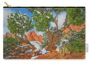 The Ferruginous Earth Of The Rocky Mountain West Carry-all Pouch