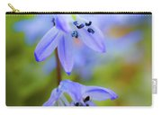 The First Spring Flowers Carry-all Pouch