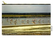 The Flamingoes Carry-all Pouch