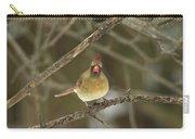 The Haridan - Northern Cardinal - Cardinalis Cardinalis  Carry-all Pouch