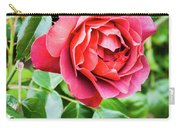 The Hot Cocoa Red Rose Carry-all Pouch