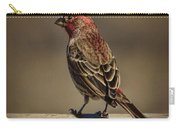 The House Finch Carry-all Pouch
