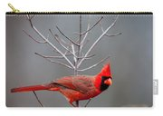The Inquiring Cardinal Carry-all Pouch