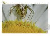 The Itsy Bitsy Spider Carry-all Pouch