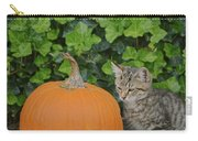 The Kitten And The Pumpkin Carry-all Pouch