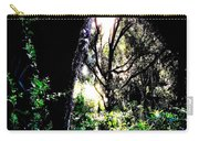 The Light At The End Of The Triangle Carry-all Pouch by Eikoni Images