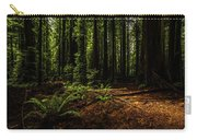 The Light In The Forest No. 2 Carry-all Pouch