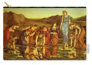 The Mirror Of Venus  Carry-all Pouch