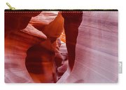 The Natural Sculpture 6 Carry-all Pouch