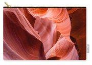 The Natural Sculpture 8 Carry-all Pouch