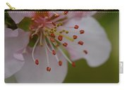 The Nectarine Blossom  Carry-all Pouch