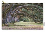 The Oaks Of Oak Alley Plantation Carry-all Pouch