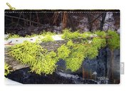 The Old Mossy Flume Carry-all Pouch