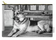 The Old Watch Dog Carry-all Pouch