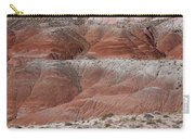 The Painted Desert  8020 Carry-all Pouch