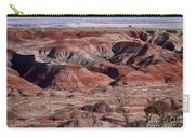 The Painted Desert  8062 Carry-all Pouch