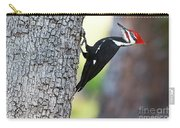 The Pileated Carry-all Pouch