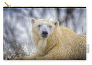The Polar Bear Stare Carry-all Pouch