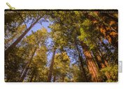 The Portola Redwood Forest Carry-all Pouch