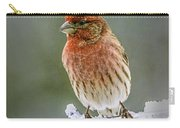 The Red Finch Carry-all Pouch