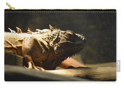 The Reptile World Carry-all Pouch