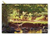 The River Lin , Bradgate Park Carry-all Pouch