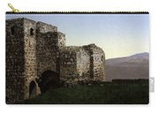 The Ruins Jezreel Holy Land Carry-all Pouch