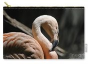 The Sacred Old Flamingoes Carry-all Pouch