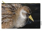 The Sora Carry-all Pouch