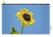 The Sun In The Sky Carry-all Pouch