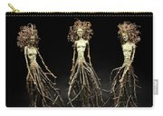 The Three Graces Dance Carry-all Pouch