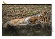 The Tiger's Rock  Carry-all Pouch