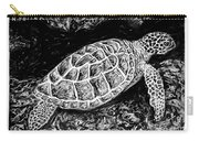 The Turtle Searches Carry-all Pouch