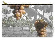 The Vineyard 2  Carry-all Pouch