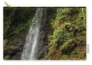 The Water Falling At The Yoro Waterfall In Gifu, Japan, November Carry-all Pouch