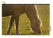 The Welsh Pony  Carry-all Pouch