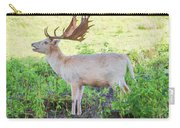 The White Stag 2 Carry-all Pouch