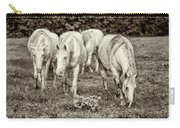 The Wild Horses Of Shannon County Mo 7r2_dsc1111_16-09-23 Carry-all Pouch