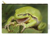 The Yawning Tree Frog Carry-all Pouch