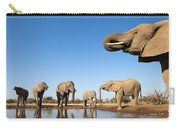 Thirsty Elephants Carry-all Pouch
