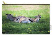 Thompson Gazelles Carry-all Pouch