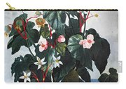 Thornton: Begonia Carry-all Pouch