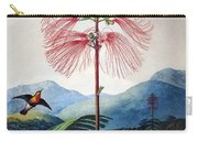 Thornton: Sensitive Plant Carry-all Pouch