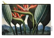 Thornton: Strelitzia Carry-all Pouch