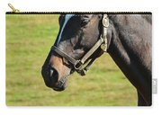 Thoroughbred Portrait Three Carry-all Pouch