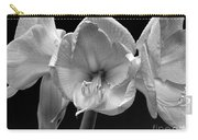 Three Amaryllis  Black And White Print Carry-all Pouch