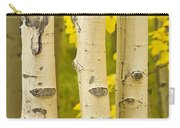 Three Autumn Aspens Carry-all Pouch