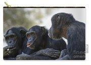 Three Chimpanzees Socializing  Carry-all Pouch